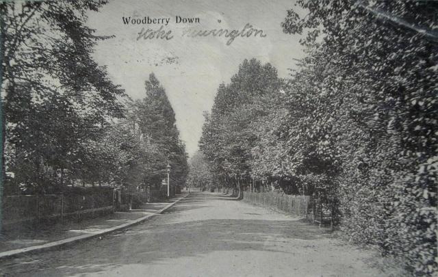 Postcard-Vintage-1905-Woodberry-Down-Stoke-Newington-London