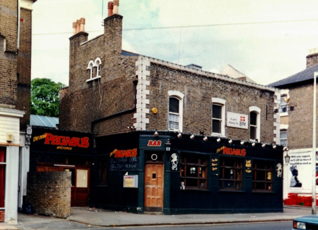 The New Pegasus 1989